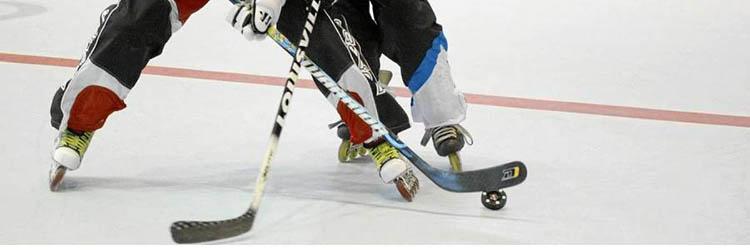 Hockey en Línea